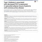Type 2 diabetes is associated with decreased PGC1α expression in epicardial adipose tissue of patients with coronary artery disease